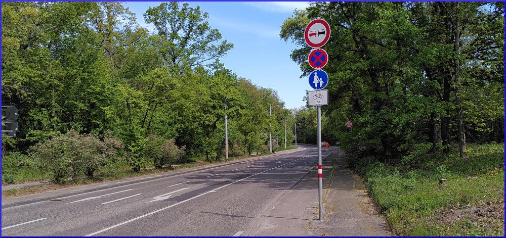 die Situation oben am Stuttgarter Kräherwald